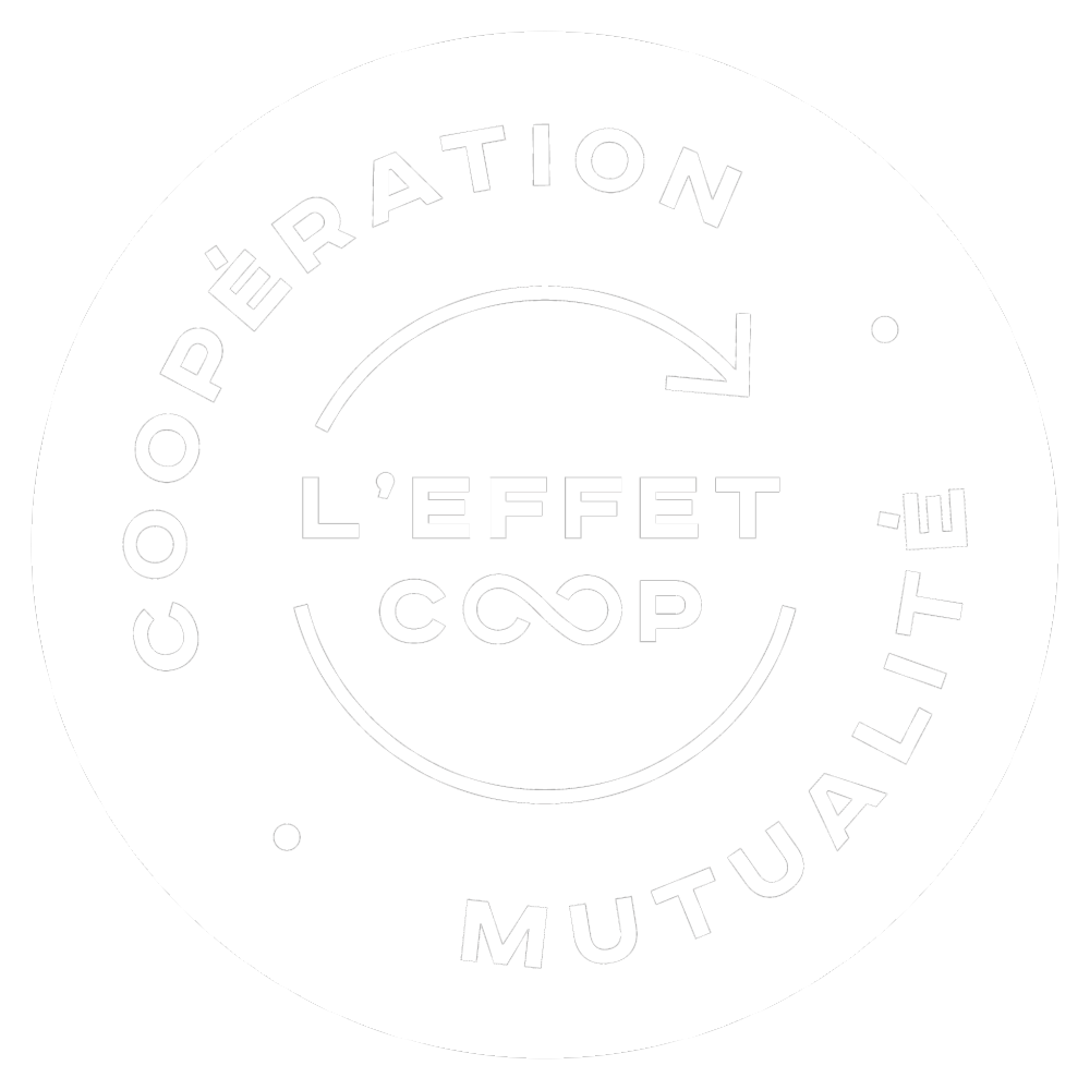 /site/assets/files/34354/effet_coop_rvb_effet_coop_cooperation_mutualite_nb_sans_fond.png